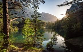 Picture trees, mountains, lake, Austria, Austria, Alps, Styria, Green Lake, Green Lake, Styria, Green lake, Tries, …