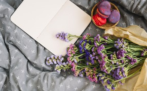 Picture flowers, blanket, flowers, cakes, purple, macaroon, french, macaron, macaroon