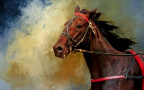 Picture horse, horse, portrait