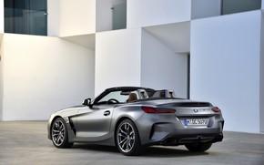 Picture grey, wall, BMW, window, back, Roadster, side, BMW Z4, M40i, Z4, 2019, G29