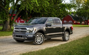 Picture road, Ford, pickup, F-150, 2020, 2021, F-series