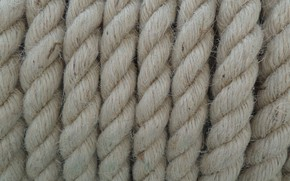 Picture jute, ropes, fiber, grey, background, rope, texture
