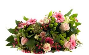 Wallpaper flowers, bouquet, white background