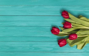 Picture green, bouquet, tulips, red, red, flowers, tulip