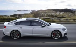 Picture Audi, profile, Audi A5, 2019, S5 Sportback