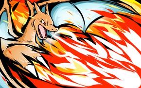 Picture fire, dragon, Pokemon, Charizard