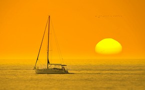 Picture sea, the sun, sunset, yacht, horizon