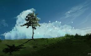 Picture field, landscape, birds, nature, the wind
