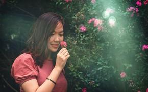 Picture girl, happy, flower, smile, asian, asian girl, flower field, sunrays