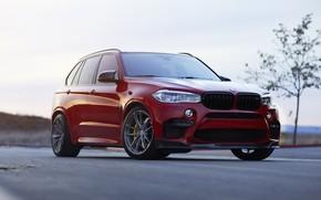 Picture BMW, Predator, RED, X5M, Sight, F85