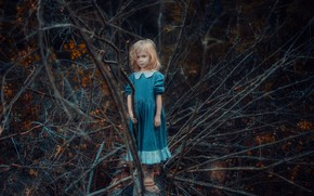 Picture forest, branches, dress, girl, blue-eyed