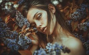 Picture look, girl, flowers, mood, portrait, spring, garden, shoulders, lilac
