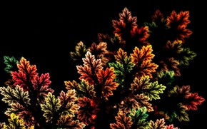 Picture autumn, leaves, nature, abstraction, rendering, fractal, black background, picture, autumn palette