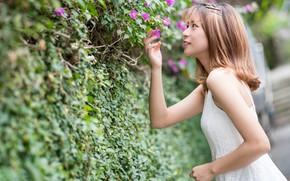 Picture girl, flowers, dress, Asian, shrub