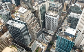 Picture the city, building, roof, skyscrapers, the view from the top, Fleur Walton