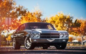 Picture Chevrolet, coupe, chevelle