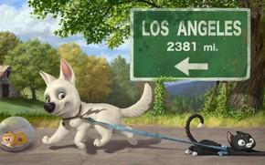 Picture road, cat, dog, Volt, Bolt