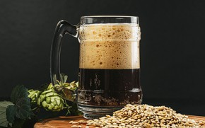 Picture foam, table, background, beer, mug, grain, hops