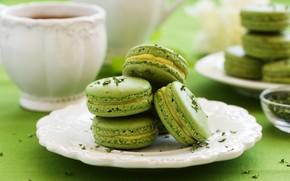 Picture green, tea, cake, macaroon