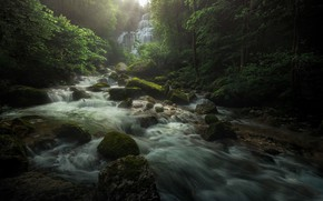 Picture forest, nature, river, stones, waterfall
