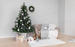 Picture winter, balls, room, sofa, wall, holiday, balls, interior, Christmas, gifts, New year, Mat, tree, elegant, …