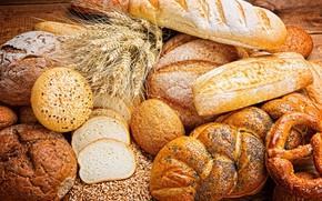 Picture wheat, grain, bread, buns