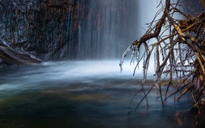 Picture ice, water, branches, nature, tree, waterfall