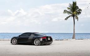 Picture Audi, Audi, Audi R8, Sports car