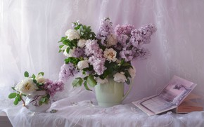 Picture roses, bouquet, book, lilac