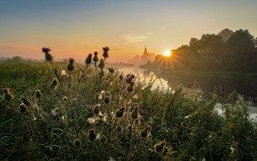 Picture summer, the sun, rays, trees, landscape, nature, river, dawn, village, web, morning, grass, Bank, Dunilovo, …