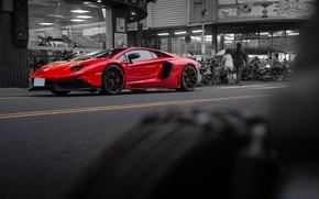 Picture road, red, sports car, LP700-4, Lamborghini Aventador, Lamborghini LP700-4 Aventador