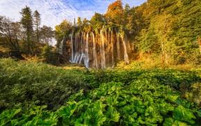 Picture autumn, trees, vegetation, waterfall, Croatia, Croatia, mugs, Plitvice lakes, Plitvice Lakes National Park, National Park …