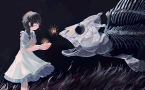 Picture grass, stars, night, fish, fantasy, skeleton, girl