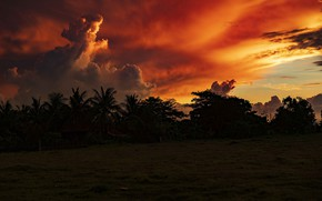 Picture the sky, clouds, trees, landscape, sunset