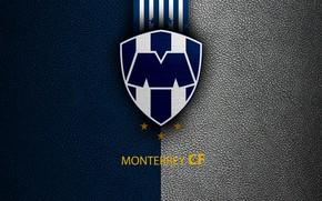 Picture wallpaper, sport, logo, football, Monterrey