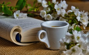Picture mood, coffee, branch, Cup, book