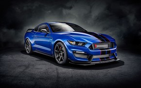 Picture background, art, Ford Mustang, muscle car, Shelby Mustang, Ford Mustang Shelby GT350R