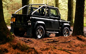 Picture trees, 2008, Land Rover, Defender, SVX, 60th Anniversary Edition