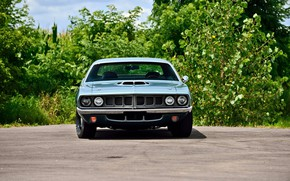 Picture 1971, Plymouth, Old, Hemi CUDA, Muscle classic