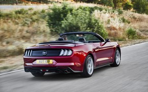Picture Ford, convertible, rear view, 2018, dark red, Mustang Convertible