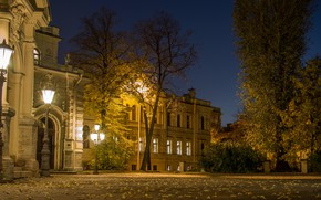 Picture night, the city, street, view, Peter, Saint Petersburg, Russia, architecture, megapolis, Leningrad, Alexeevsky Palace