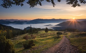 Picture the sun, clouds, rays, landscape, mountains, nature, fog, track, forest, Carpathians, Dean Zargo, Zargo Dinn