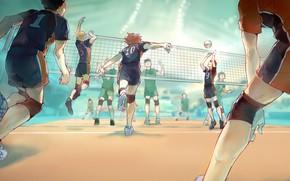 Picture the game, guys, Volleyball, Haikyuu