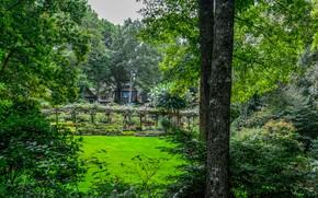 Picture greens, grass, trees, branches, foliage, garden, USA, the bushes, Gibbs Gardens