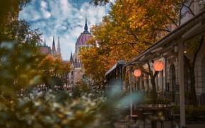 Picture autumn, trees, the city, street, building, home, Parliament, tower, the dome, Hungary, Budapest, Konstantin Voronov