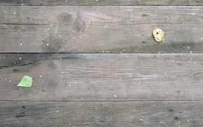 Picture grunge, grunge, loft, the old Board