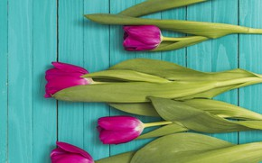 Picture tulips, pink, wood