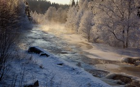 Picture winter, forest, snow, landscape, nature, river, beauty, frost, couples
