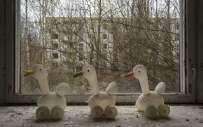 Picture toys, duck, window, Chernobyl