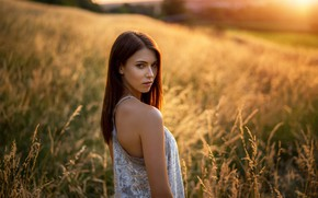Picture field, grass, look, the sun, nature, model, portrait, makeup, dress, hairstyle, brown hair, beauty, bokeh, ...